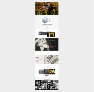 Gonzalocampo - homepage